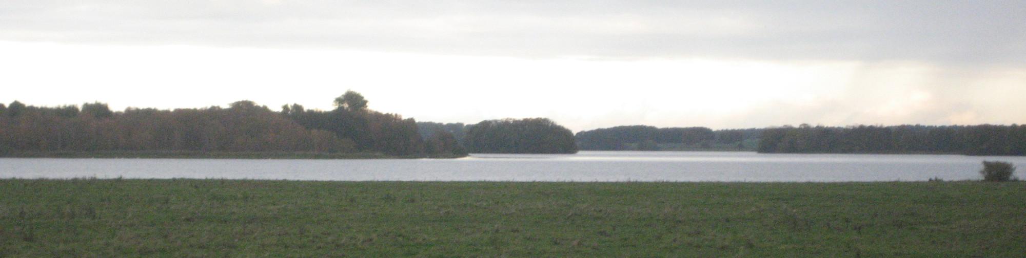 Psychotherapie Rheingau